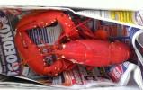 Aquastaete 119 Bruinisse impressie foto 2